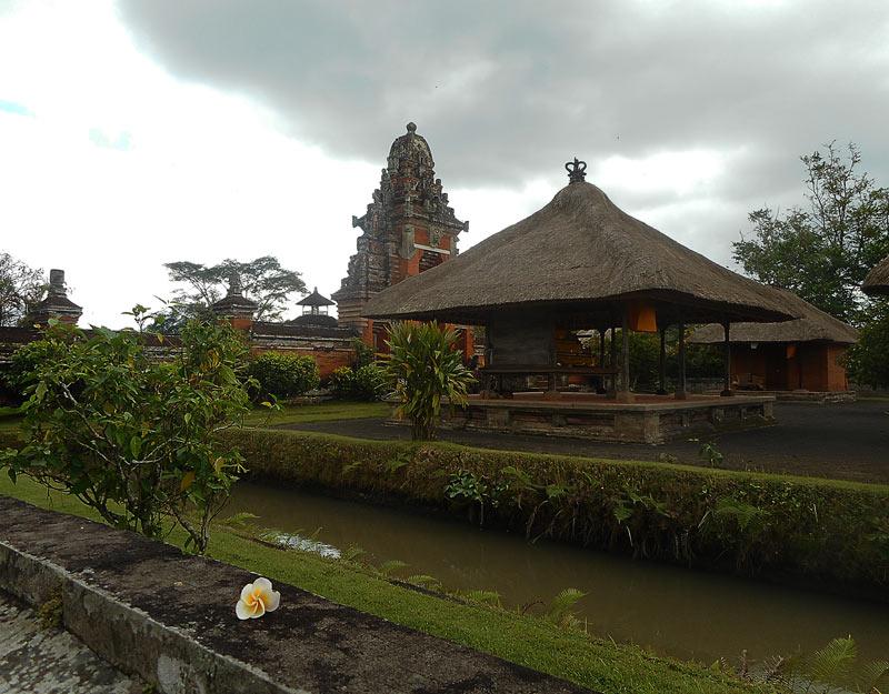 Frangipani al tempio Taman Ayun