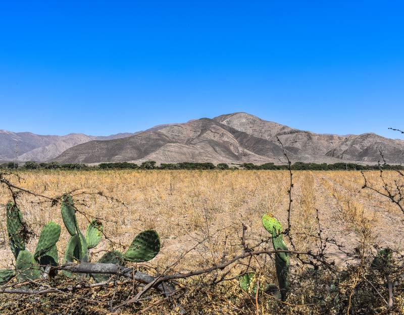 Il panorama arido di Nazca