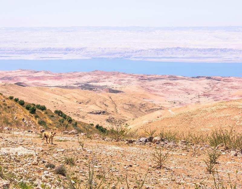 Quanti giorni per un viaggio in Giordania