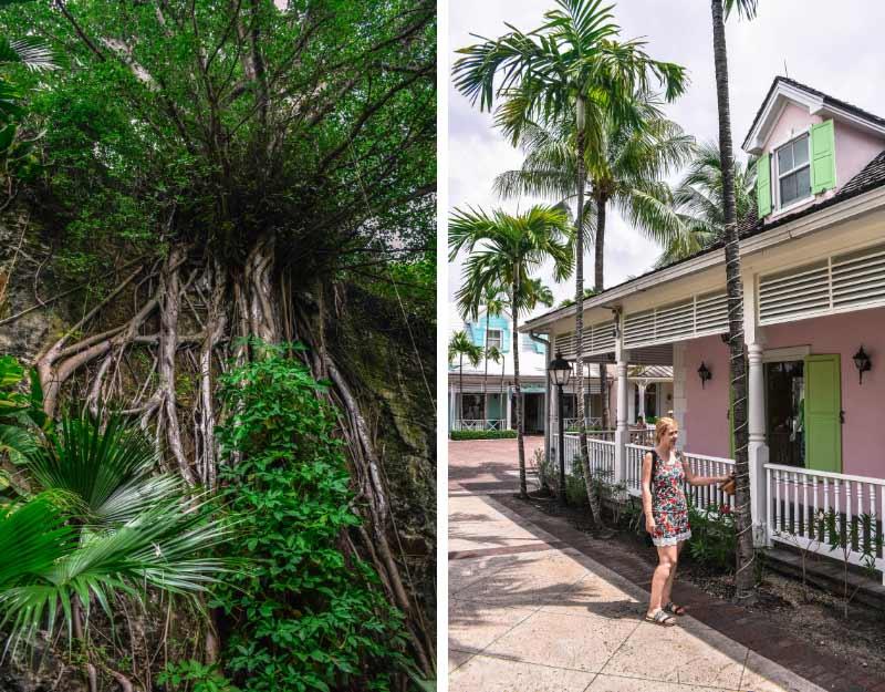Scoprire le Bahamas