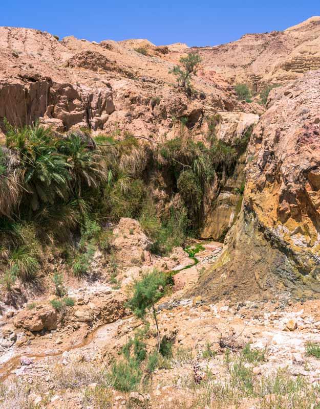 Sorgente del Mar Morto in Giordania