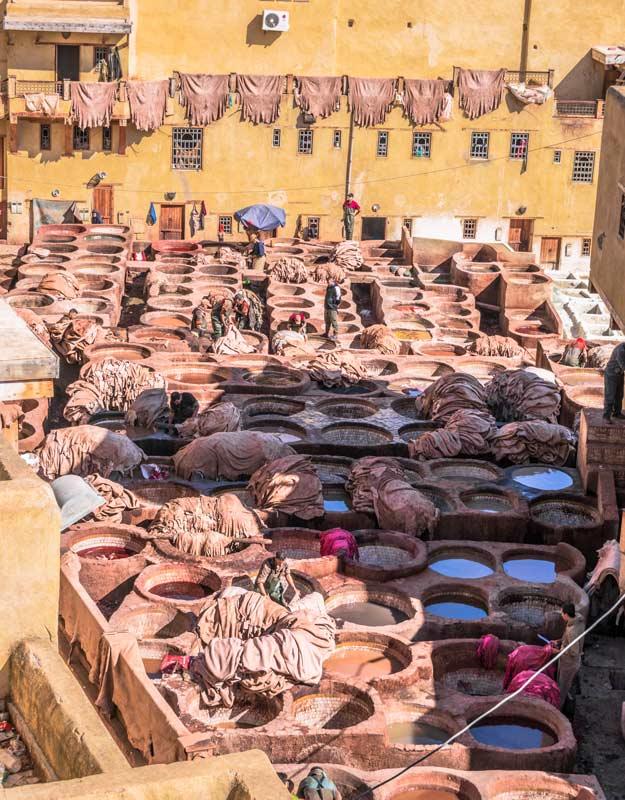 Concerie Chouara di Fez