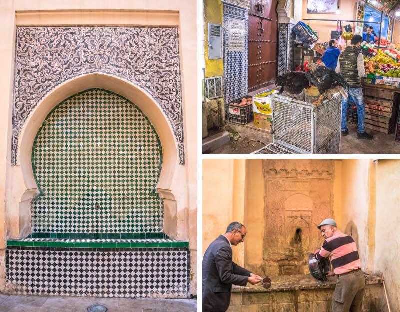 Da non perdere a Fez