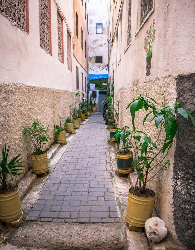 Strade della Medina di Fez