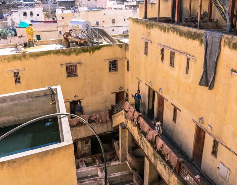 Visitare le concerie di Fez