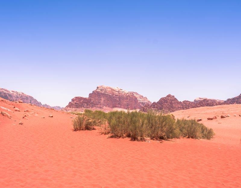 Cosa vedere nel Wadi Rum