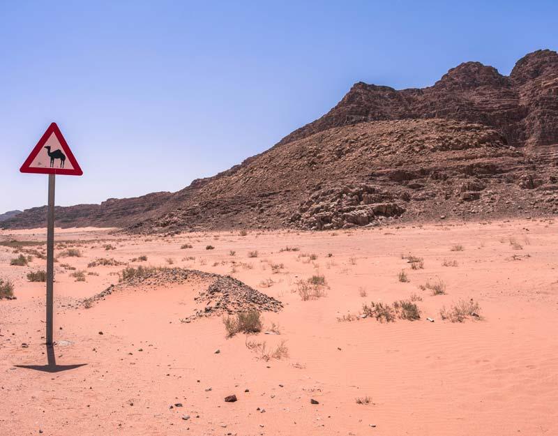 Giornata nel Wadi Rum